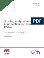 GPPi 2013 DFID Scoping-study-protection