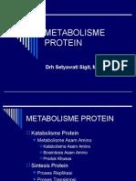 METABOLISME PROTEIN+AS.AMINO