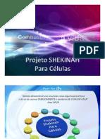 Projeto Shekinah Para a Implantação da Visão Celular