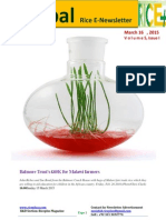 16th March,2015 Daily Global Rice E_Newsletter by Riceplus Magazine