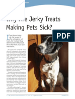 Why Are Jerkey Treats Making Pets Sick