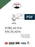 2013_forcas