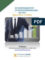 Rapport RSE AfriqueDuNord Juin 20131