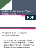 Os Principais Campos e Tipos de Psicopatologia (Aula II)