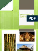 Bambú Para La Construcción (2)