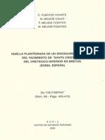 Huella Plantigrada de un dinosaurio teropodo del yacimiento de santa cristina del cretacico inferior en bretun, soria, españa