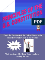 8 - principles of the constitution review