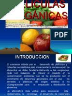 Exposicion de Envases Organicos