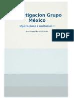 Investigacion Grupo Mexico