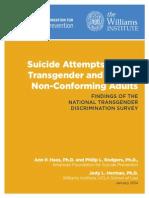 AFSP Williams Suicide Report Final