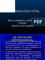 EXPO endocrinologia fetal.ppt