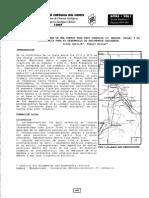 Paleogeografia del borde de una Cuenca Trasarco Jurasica v Region