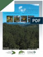 PLAN CONSERVACION Bosques Pino-Encino