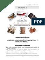 Practica 1 Diseccion 2012 a Final
