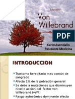 enfermedaddevonwillebrand-140830164049-phpapp02