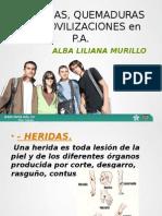 Heridas, Quemaduras e Inmobilizaciones p.ax. (2) Diapositivas