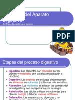 Clase Nº 08 Fisiología Del Aparato Digestivo (1)