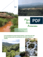 07 Servicios ambientales.ppt