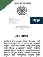 anginapectorispreasentation-111215175459-phpapp01
