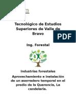 establecimiento de una empresa forestal comunitaria