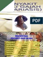 epid filaria