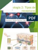 Expo Tipos de Neur
