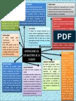 Mapa conceptual de los autores de calidad