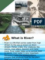river ecosystem (ppt)