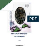 Resumen Ejecutivo Ocustambo 2010
