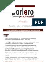 Borlero consulting empresarial presentación corporativa