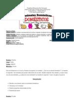 Animales Domesticos1