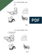 0_0_fisa_insecte_grupa_mica
