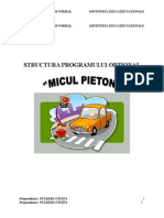 Activitate Optionala  Micul Pieton- gr. mare