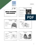 Coração_ pericárdio_ c_ fetal - resumida nutri.pdf