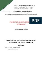Cuprins Proiect Analiza I