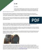 Article   Alisar El Pelo (8)