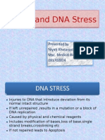 Nrm1 and DNA Stress