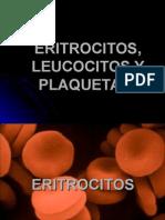 eritrocitosleucocitosyplaquetas-121124180451-phpapp01.ppt