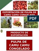 Copia de FINANCIAMIENTO DE NEGOCIOS DE EXPORTACION - PULPA DE CAMU CAMU.pptx