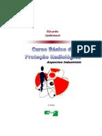 CURSO BÁSICO DE RADIOPROTEÇÃO.pdf