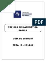 Topicos de matematicas-ejercicios.pdf