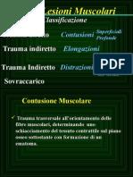 Muscolo 1012