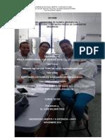 Informe Quimica Organica 1Vfinal.docx