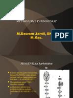 Metabolisme KH 11