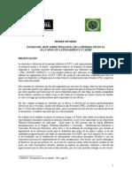 PRIMER INFORME de María Victoria Peralta 3.5.07