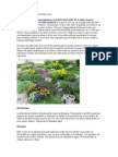 Plantas Para Jardines Exteriores