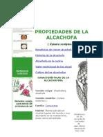 alcachofas.docx