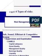 Topic 4 Types of Risks