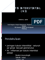 Nefritis Interstiatial