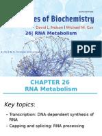 ch26_RNA Metabolism.ppt